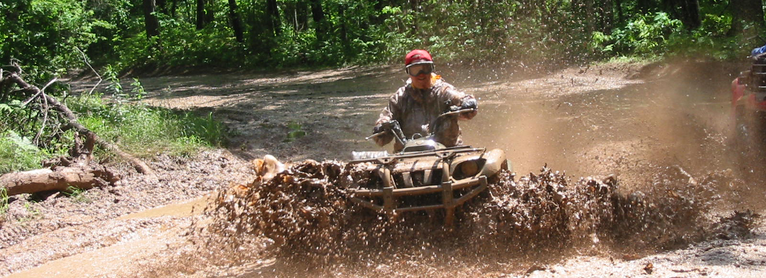 Fun On Four Wheels!